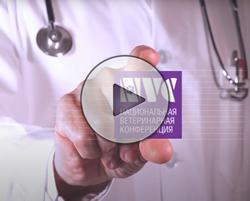 Видео Скажи ДА! NVC2020
